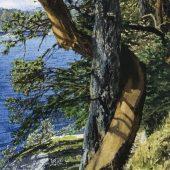 Coast Gallery Salt Spring Island - Artist Carol Evans